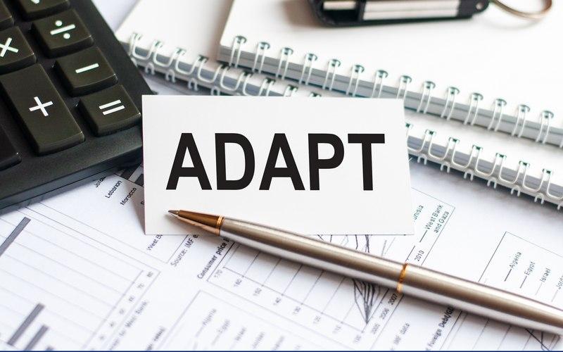 O que é adaptabilidade e qual sua importância no mercado de trabalho